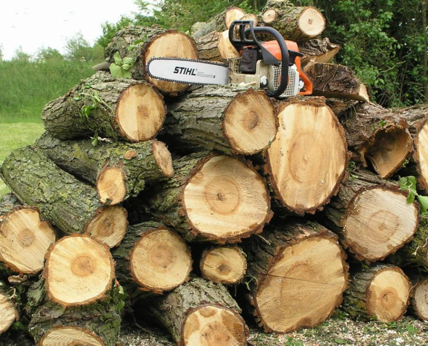 Stack of Logs with Chainsaw