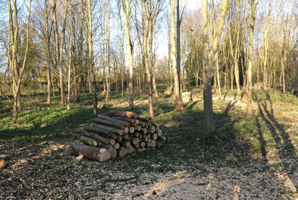 Woodland Management Homepage